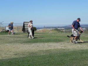 Dog Obedience Training For The Sacramento California Area :